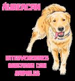 Aureacan