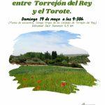 Ruta circular entre Torrejón del rey y el río Torote